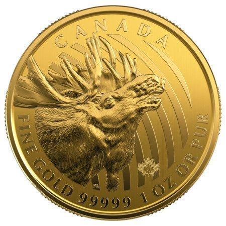 Zew Natury Łoś Złota Moneta 1 uncja 24h